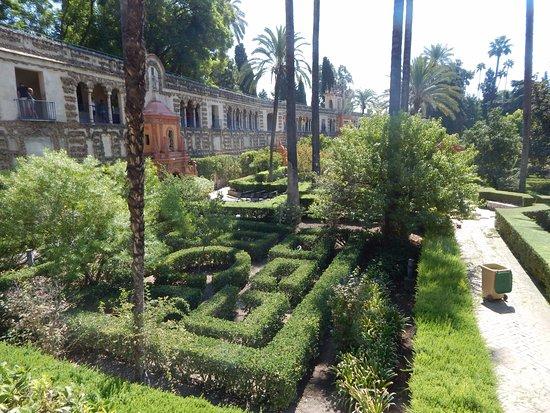 Jardines de los reales alcazares seville spain top tips before you go with photos - Jardines de sevilla ...