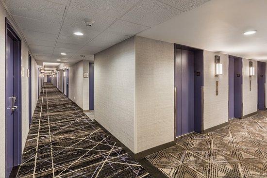 Κάλβερ Σίτι, Καλιφόρνια: Guestroom Hallway