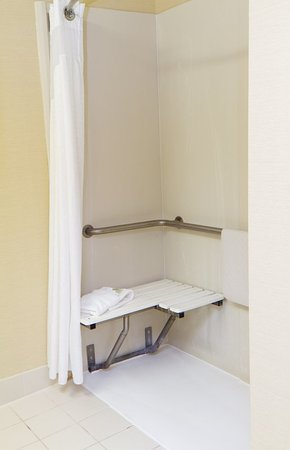 Holiday Inn Express Greenville Downtown: Guest Bathroom