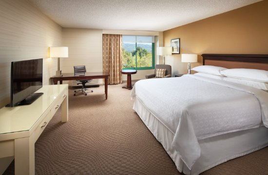 Milpitas, Καλιφόρνια: Preferred Guest room