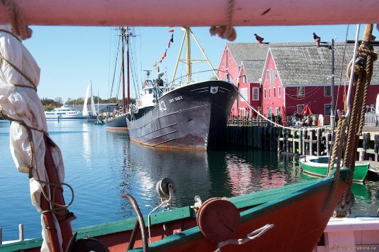 Fisheries Museum of the Atlantic: View of Museum, Bluenose II and Cape Sable from on board the Theresa E. Connor