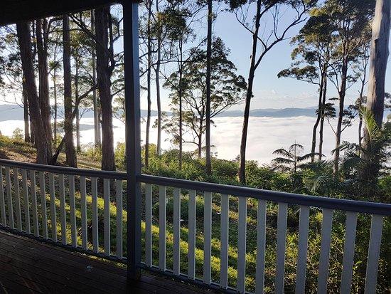 Aaronlee Retreat Mount Tamborine Australien Omd Men