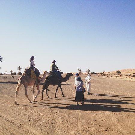 L'Auberge Oasis: ラクダのツアー