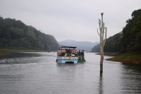 Periyar Wildlife Sanctuary: The cruise at Periyar