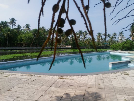 Swimming Pool Lovely Picture Of Mermaid Hotel Kochi Cochin Tripadvisor