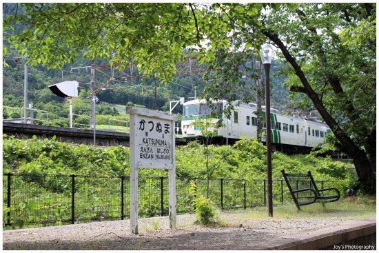 Koshu, Japan: Jinrokuzakura Park