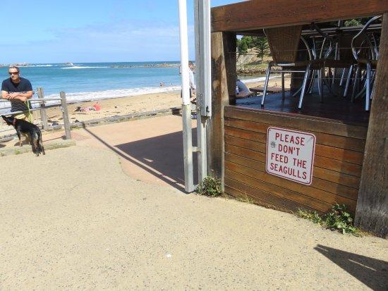 Port Elliot, Australia: Approaching the beach Cafe