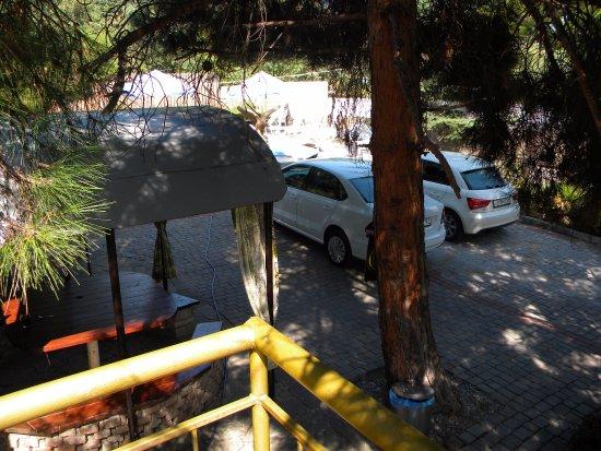 Ponyzivka: Вид на дворик и бассейн