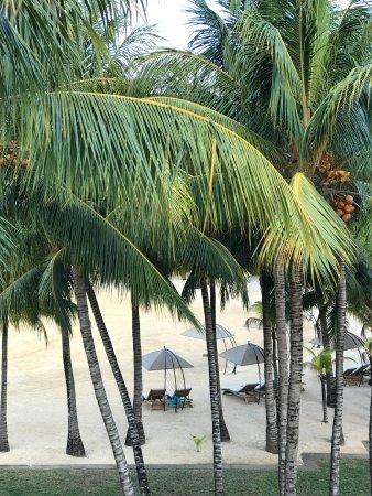 Paradise Cove Boutique Hotel: photo8.jpg