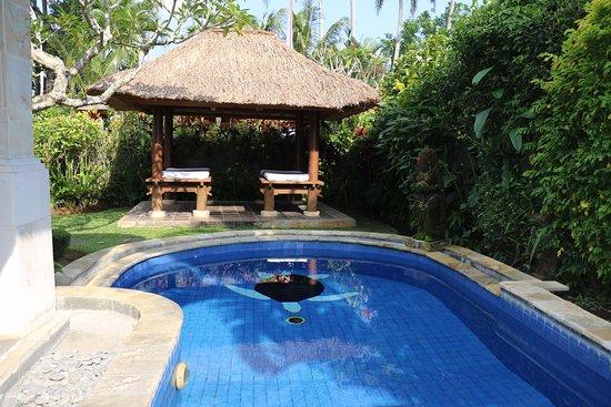 Furama Villas & Spa Ubud: our garden and pool