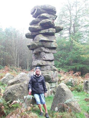 Ripon, UK: Druids Temple