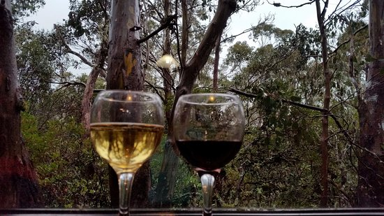 Cradle Mountain Wilderness Village: Warm inside with wine and views.