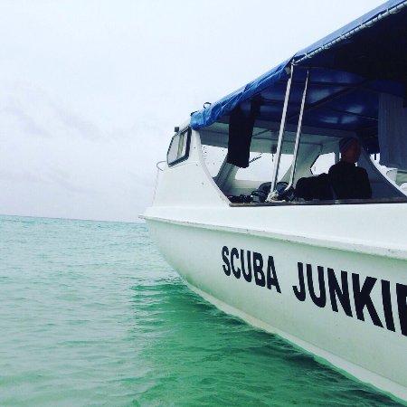 Derawan Islands, Indonesia: photo6.jpg