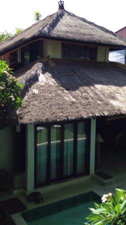 Little Tree House Bewertungen Fotos Preisvergleich