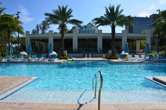 Hilton Orlando Buena Vista Palace Disney Springs Updated