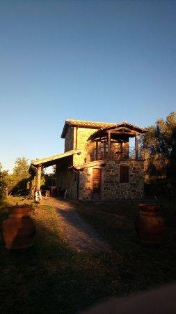 Semproniano, Italia: IMG-20171021-WA0055_large.jpg