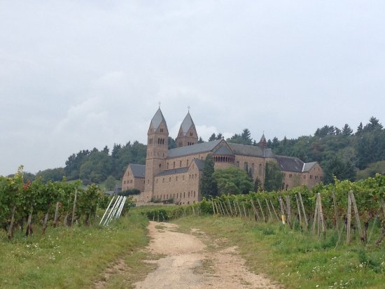 Benedictine Abbey of St. Hildegard: Vineyards and Abbey.