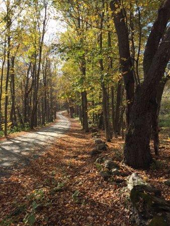 Hartland, VT: Best Road