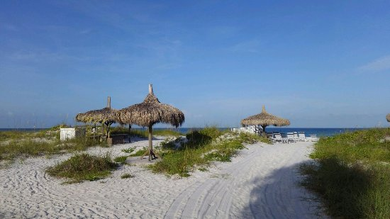 Tortuga Beach Resort: 16269_large.jpg
