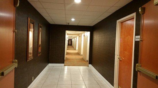 Hampton Inn Suites Valdosta Conference Center: Clean, modern floors