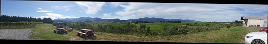 Blenheim, New Zealand: Greywacke