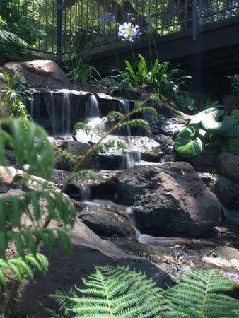 Saratoga, Kalifornia: Waterfall outside of Bungalows