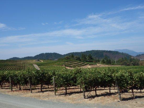 Santa Helena, Califórnia: Pride Mountain