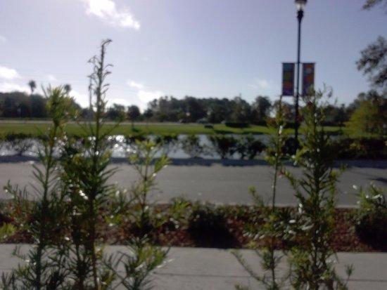 Ponte Vedra Beach, Floryda: Exterior View of Pond
