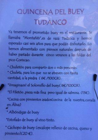 Vicente Campo: Opciones con el buey tudanco.