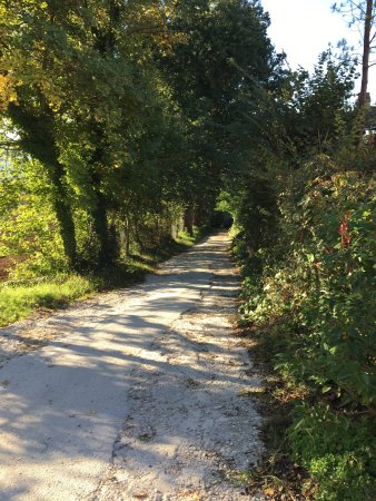 Falerone, Italie : photo2.jpg