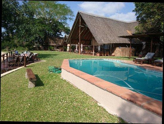 Buckler's Africa: DSC_0522_large.jpg