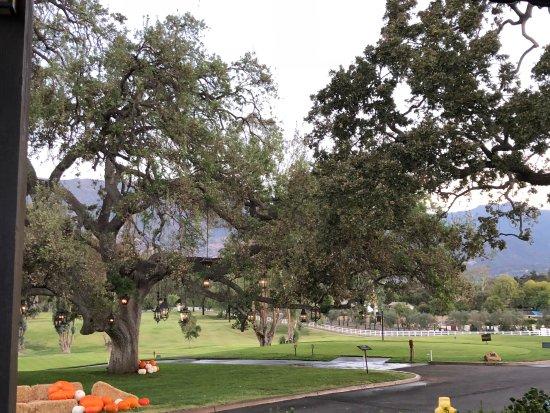Ojai Valley Inn-bild