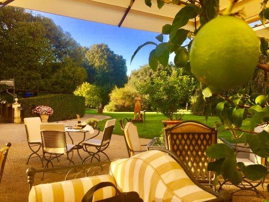 der pool picture of four seasons hotel firenze florence tripadvisor. Black Bedroom Furniture Sets. Home Design Ideas