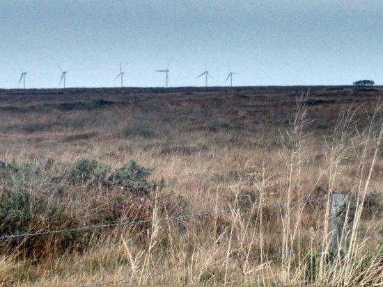 Ruan Minor, UK: Goonhilly downs a short walk away
