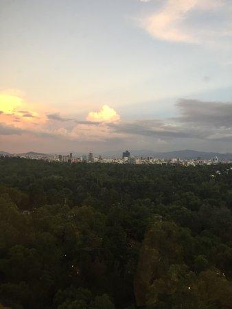 InterContinental Presidente Mexico City: a maioria dos quartos dá para o parque.