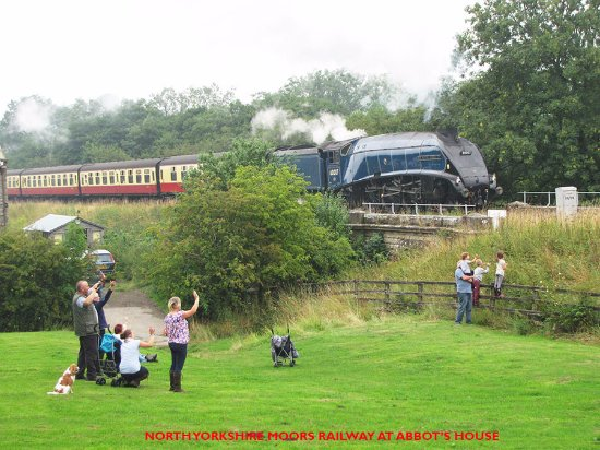 Abbot's House Farm: view of NYMR from a camping field.