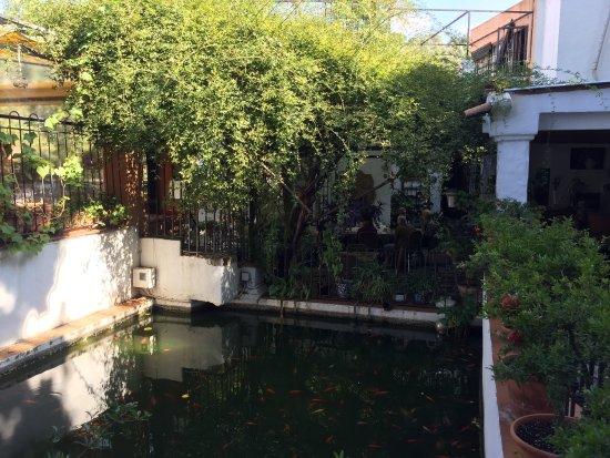Picture of restaurante jardines alberto for Jardines de alberto granada