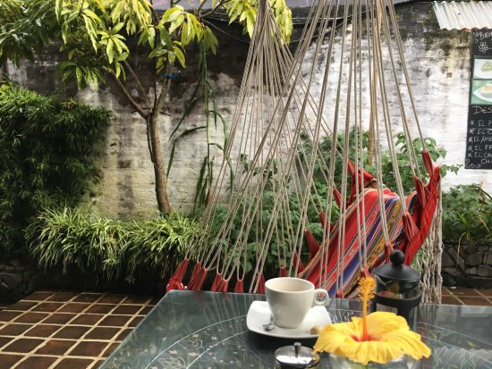 Arte Cafe & Te: gorgeous terrace and hammock chairs
