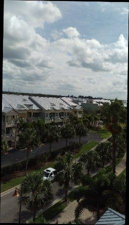 Ruskin, FL: IMAG2099_large.jpg