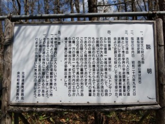 Nishizakiyama Stone Circle: 現地説明板