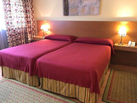Hotel Monumento Pazo de Lestrove: photo3.jpg