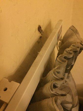 Malmesbury, UK: Dirty filthy rooms