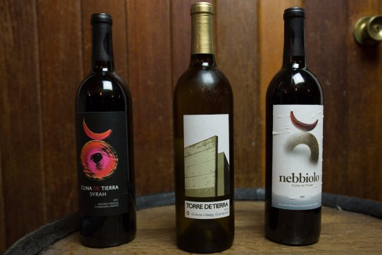 Salamanca, Mexico: Vinos guanajuatenses