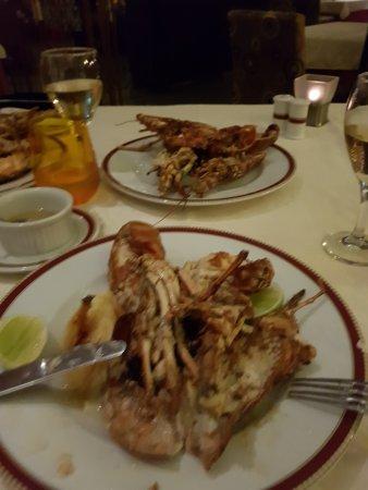 Dreams La Romana Resort & Spa: Lobster