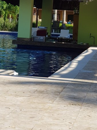 Dreams La Romana Resort & Spa: Adults pool bar
