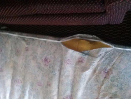 Senatobia, MS: Torn mattress and dirty