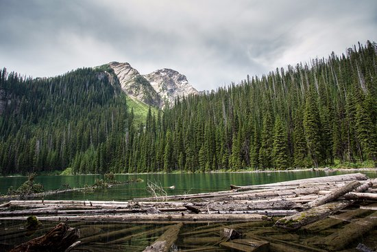 Skookumchuck, แคนาดา: Fish Lake - Center of Top of the World Provincial Park