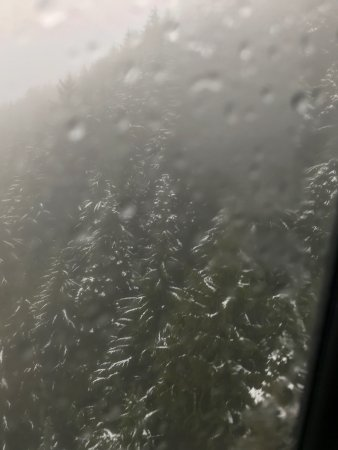 Vancouver Utara, Kanada: photo6.jpg