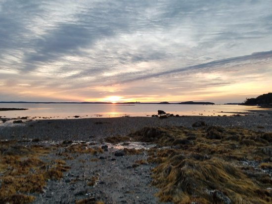 Hulls Cove, ME: sunrise at low tide