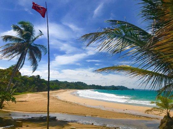 Isla Bastimentos, ปานามา: Scenic dining